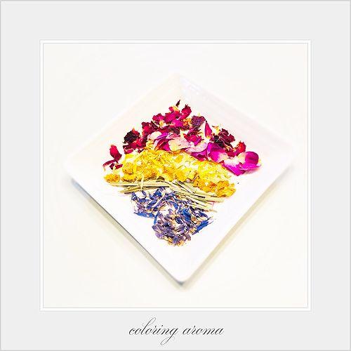 カラーリングアロマ/色彩と香り編