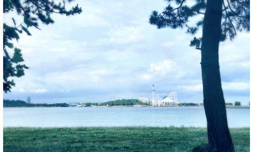 《 summer season・アロマ/対面式&オンライン編 》